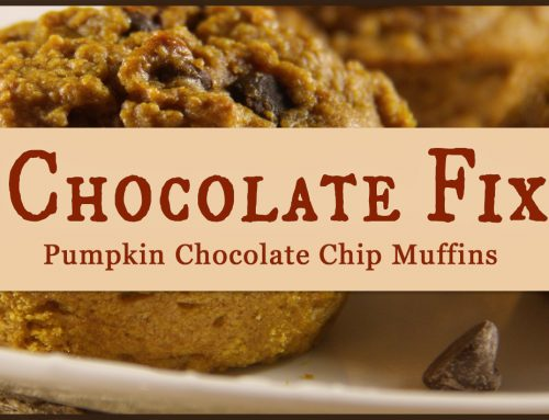 Chocolate Fix: Pumpkin Chocolate Chip Muffins