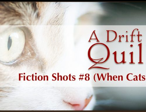 A Drift of Quills:  Fiction Shots #8 (When Cats Fly)